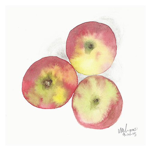 three apples / monica loos